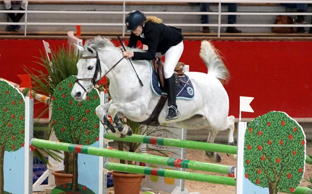 poneys5