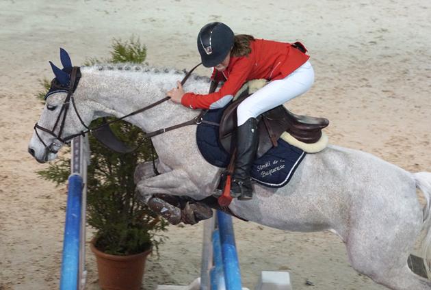 poneys6